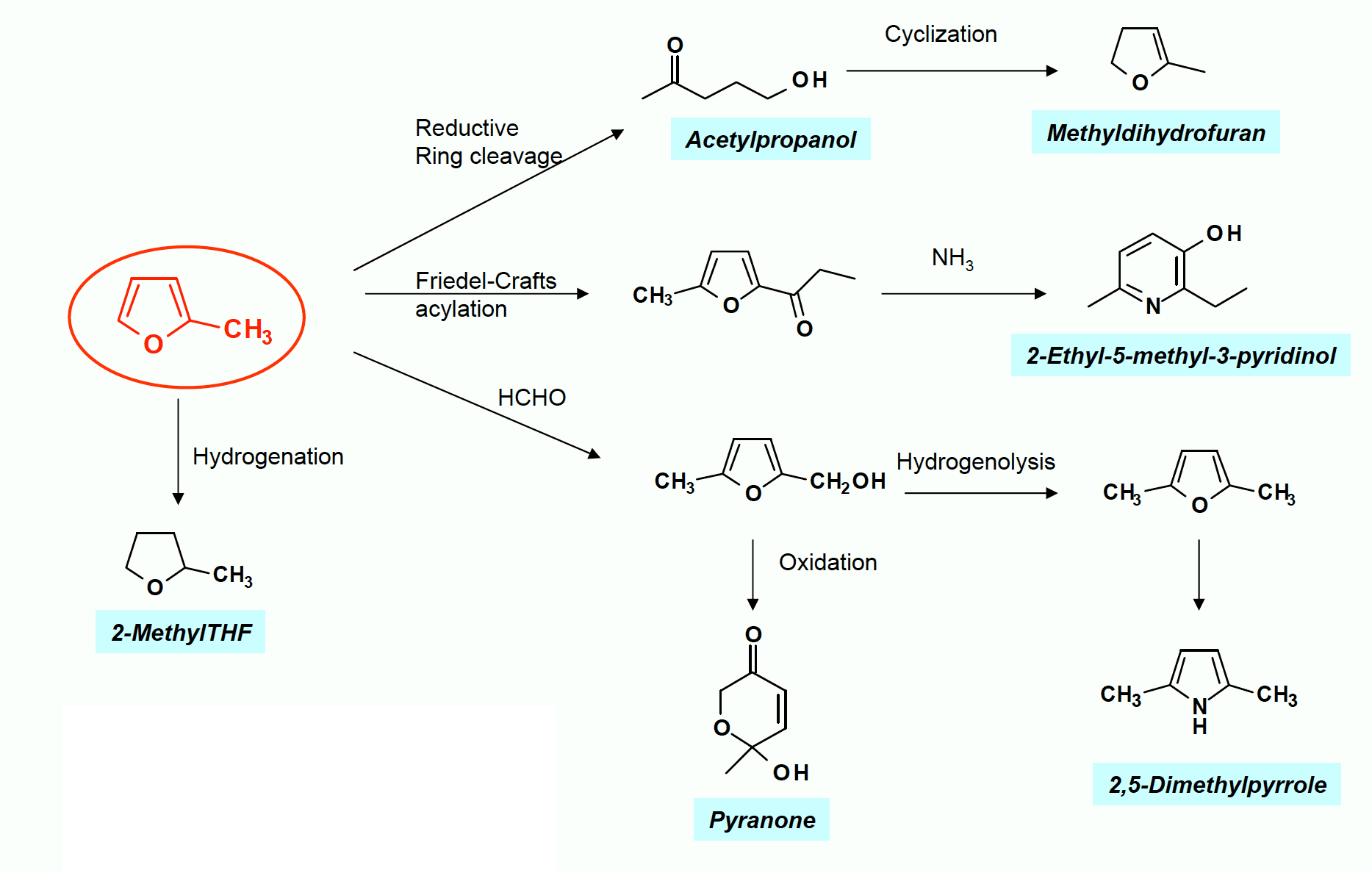 2-Methylfuran Tree