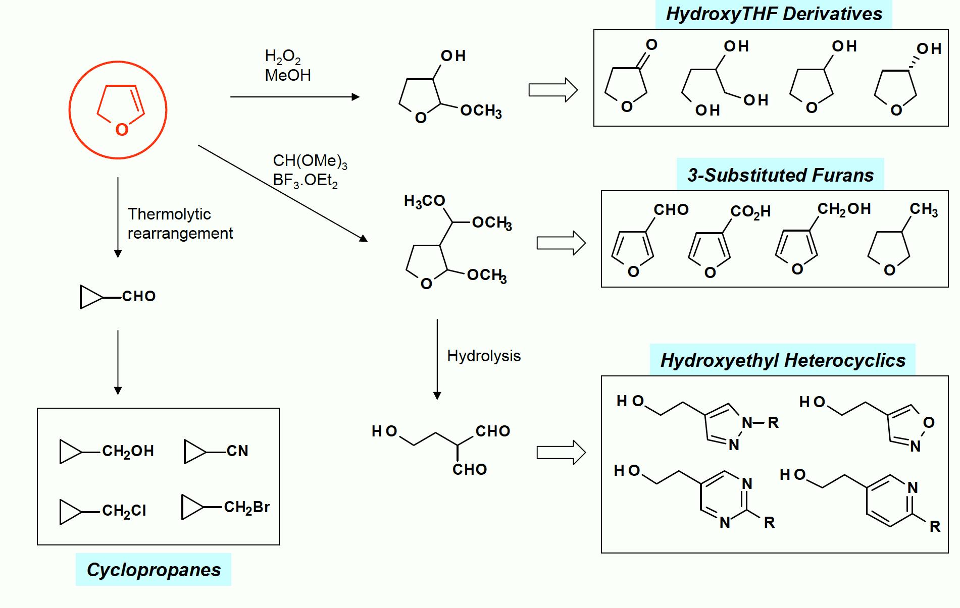 Dihydrofuran Tree